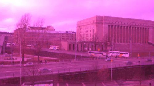 Sibis & Eduskunta in pink